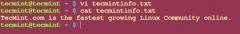 使用awk输出文本中的字段和列的方法