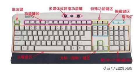 电脑打字手指正确姿势(电脑打字怎么学比较快)(1)