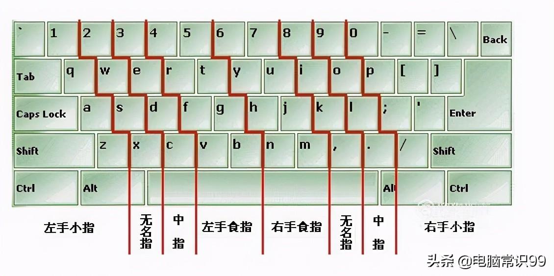 电脑打字手指正确姿势(电脑打字怎么学比较快)(4)