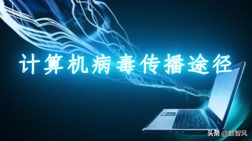 计算机病毒通过什么传播(计算机病毒传播主要通过什么途径)(1)
