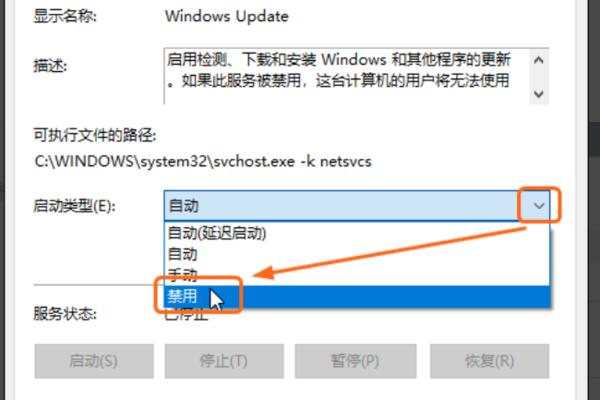 w10关闭自动更新(win10永久关闭自动更新的方法)(5)