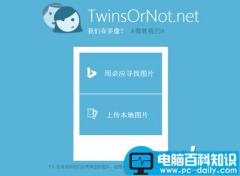 微软我们有多像TwinsOrNot怎么玩?TwinsOrNot.net使用教程