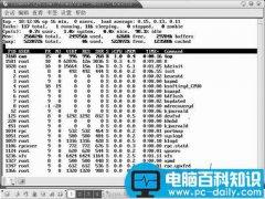 Linux常用系统管理命令(top、free、kill、df)